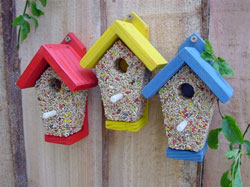 a great opportunity to watch garden birds close up take a look at our favourite selection of bird feeding goodies for more ideas