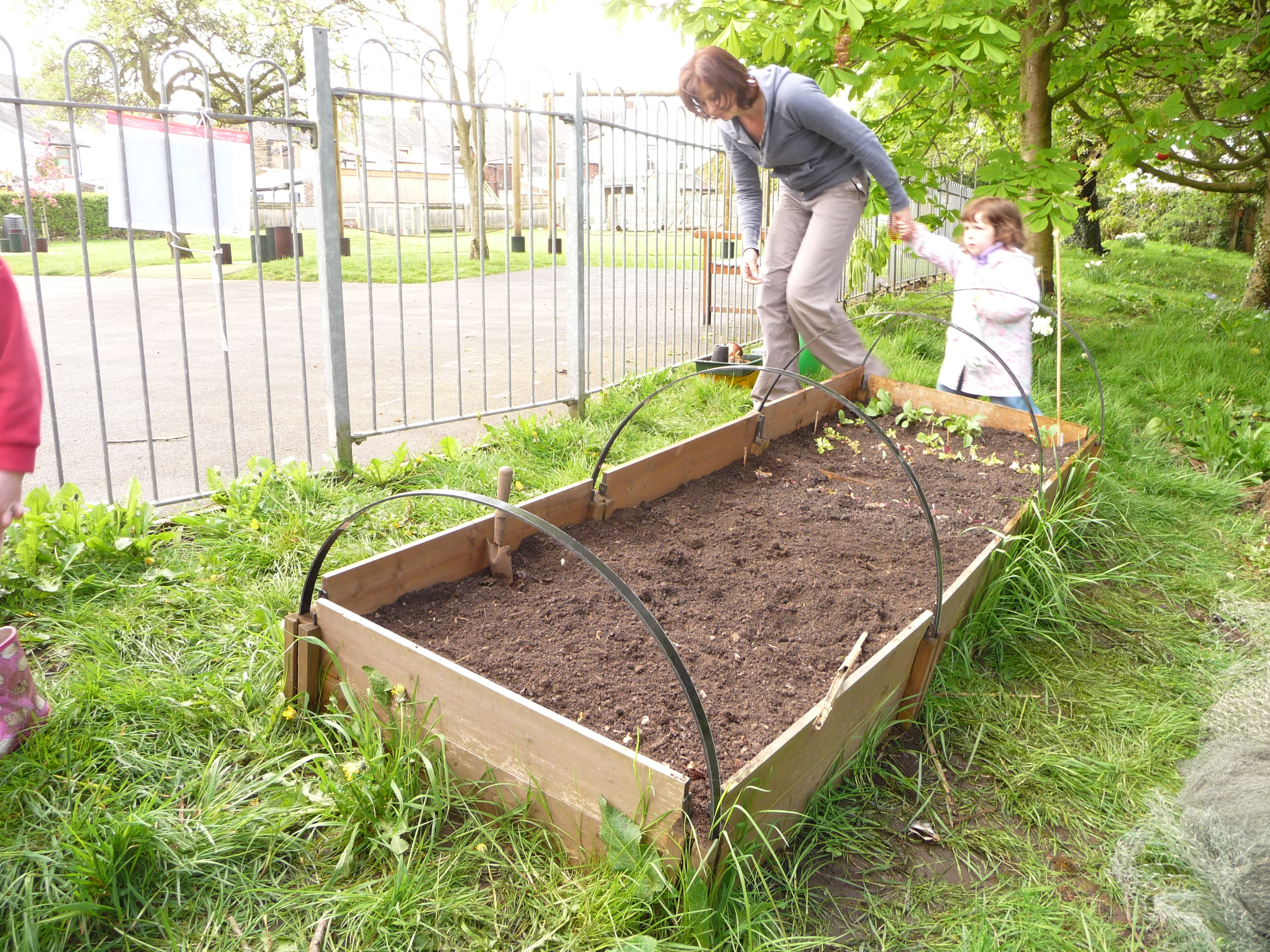 Gardening jobs for march what to do this term school for Gardening jobs for march